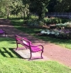 Stirling Observer finally picks up Story of Pink Benches