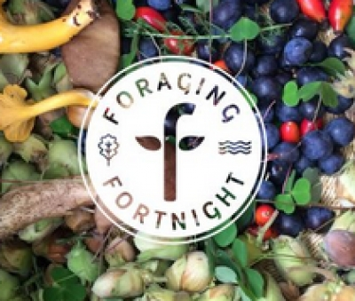 It's Foraging Fortnight to 15 Sept