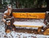 New carved benches on Holmehill